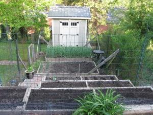 Jamie's Home Garden