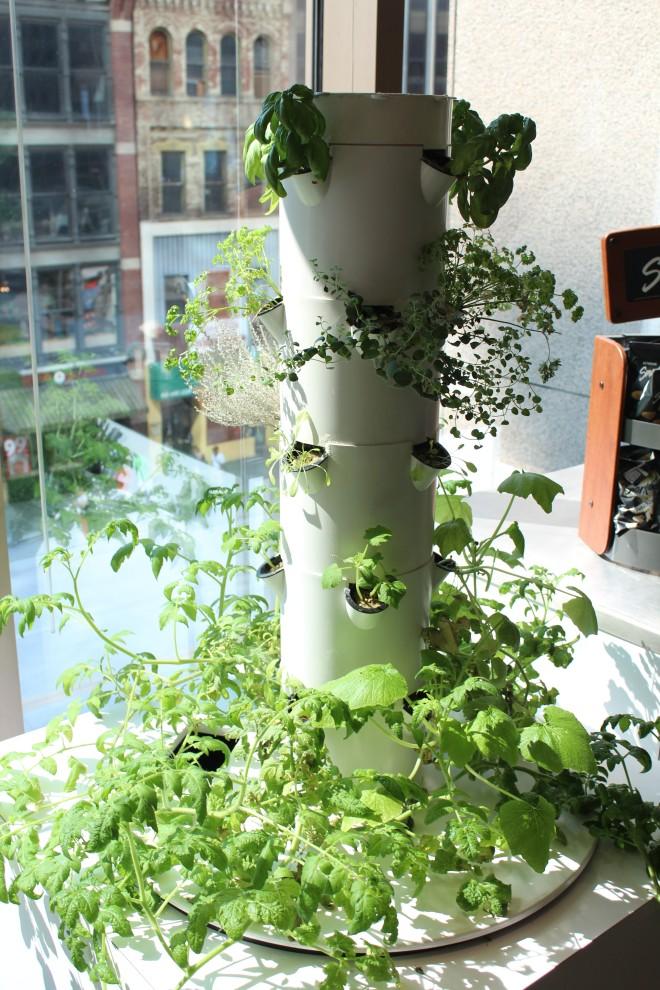 Grow Tower - Highmark